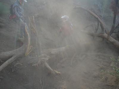 2005-08-06