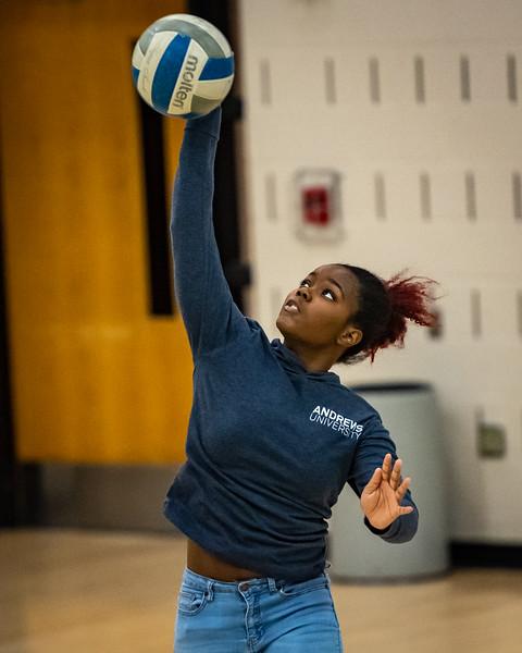 2018-12-01-Stevenson-Ladies-Volleyball-#-105.jpg
