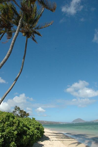 Hawaii - Kahala Beach-13.JPG