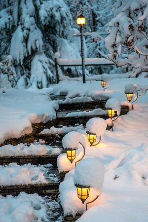 December Snow Fall - 12-9-17