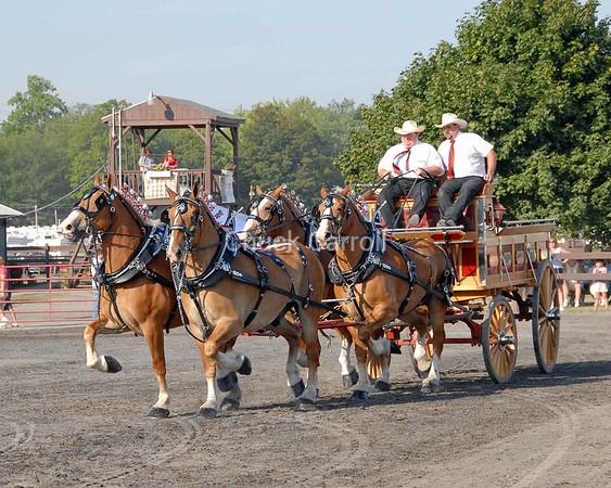 Grange Fair 2008 --  Draft Horses  -  4 Horse Hitch  --   Friday August 22