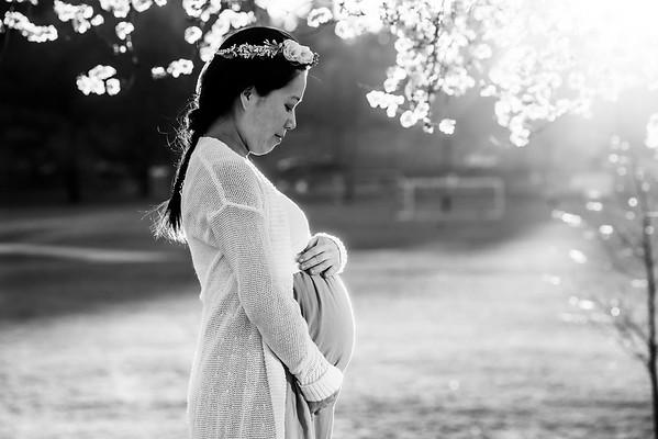 Pregnancy - WEB