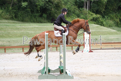 Grand Prix Ring: Level 1 Schooling Jumpers and Low Child/Adult Jumpers
