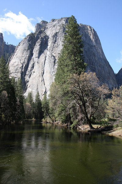 Yosemite stream.jpg