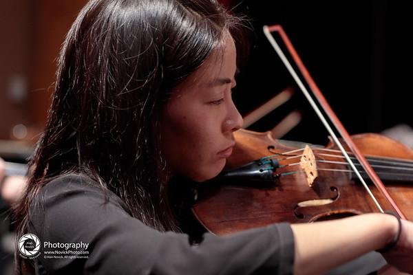 Wellesley Symphony Orchestra