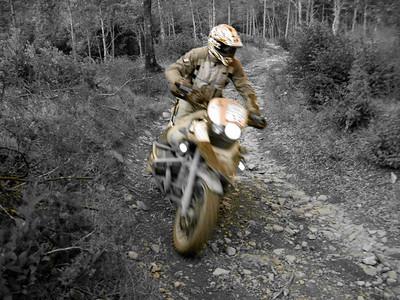 Motocross & Enduro