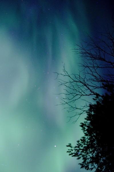 Kiilopaa - Aurora Borealis 10.jpg