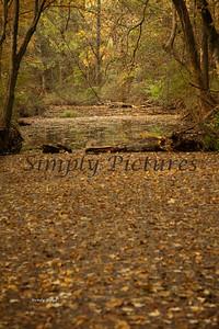 Banita Creek110