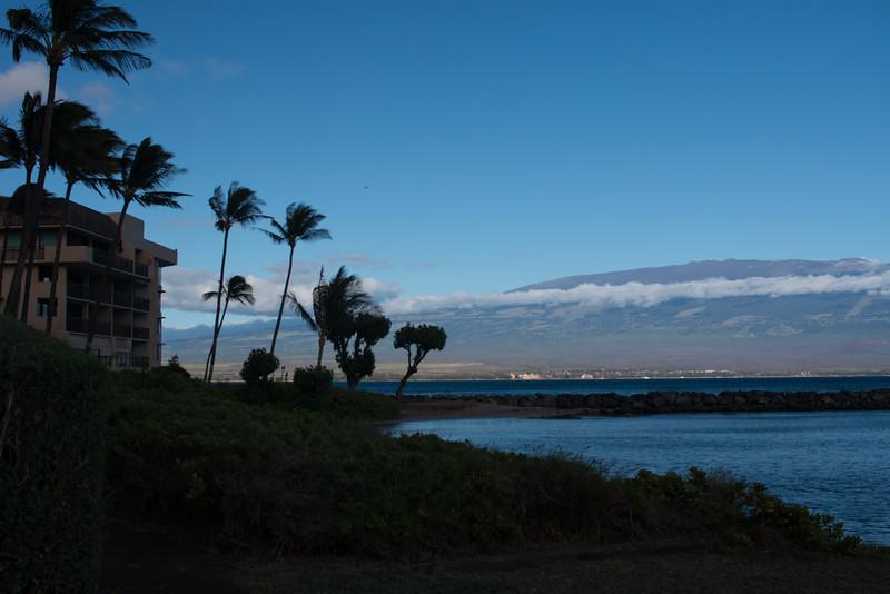 Maui, Day 3: Beach day at Kahekili Beach Park!