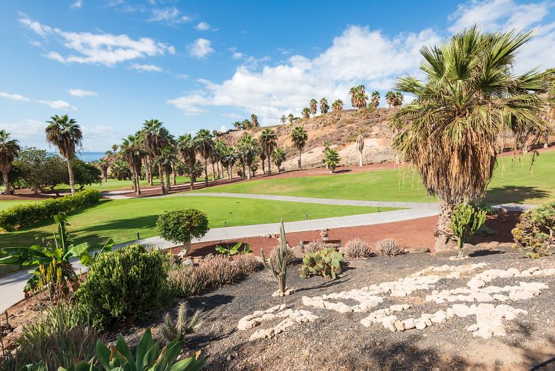 Golf Adeje_20191021_9302.jpg