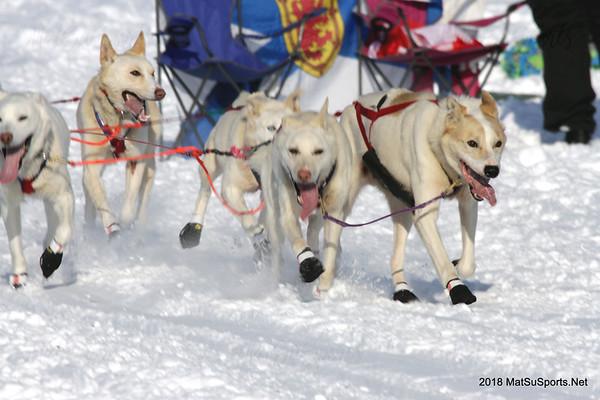 Iditarod Restart 3-4-2018