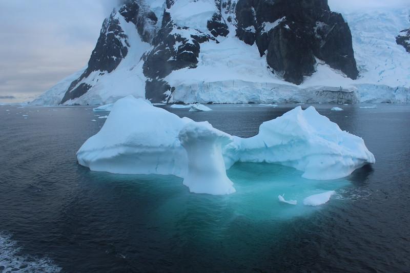 Antarctica 109.JPG