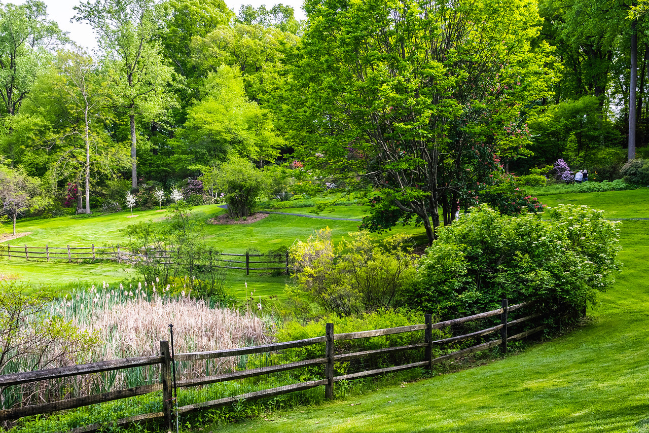 滨州詹金斯植物园(Jenkins Arboretum),景色宜人