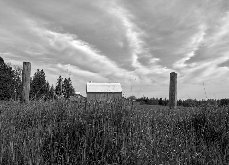 Rural Skyscape, Ontario