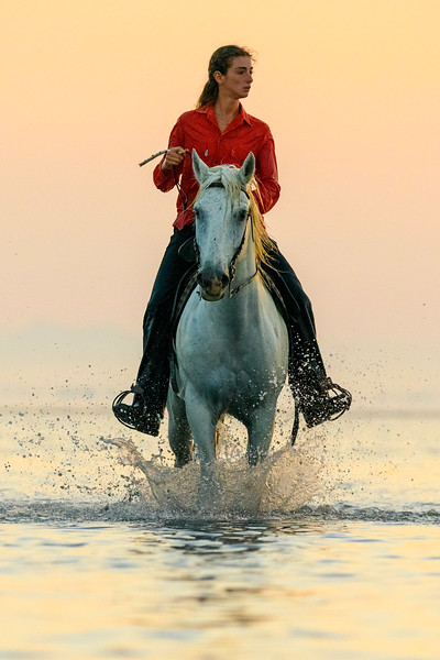 Guaridan riding at sunrise