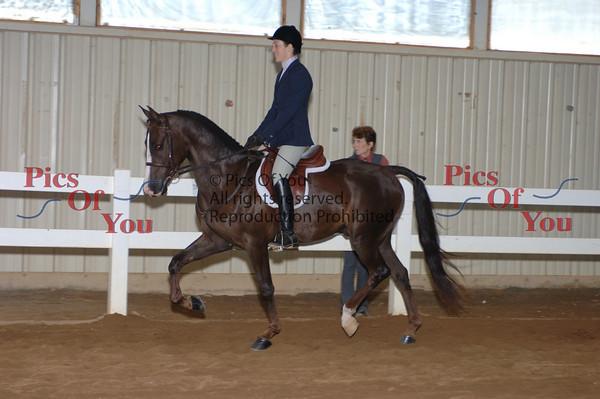 CLASS 027 Hunter Pleasure Junior Horse