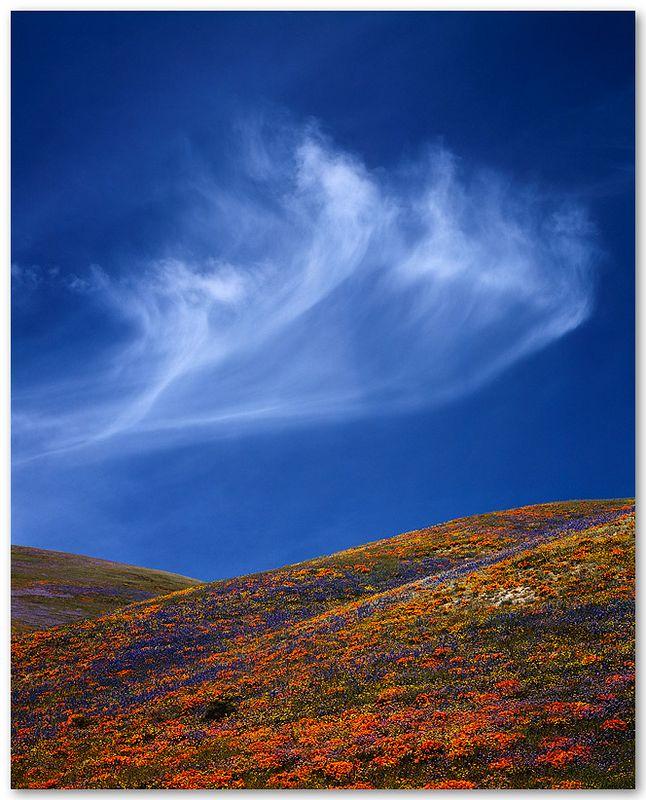 Gorman Clouds