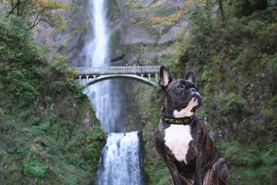 Fall Day Trip in Oregon