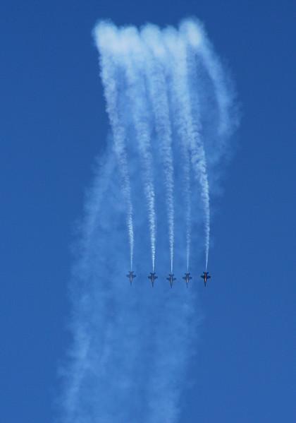 7364 Blue Angels.jpg