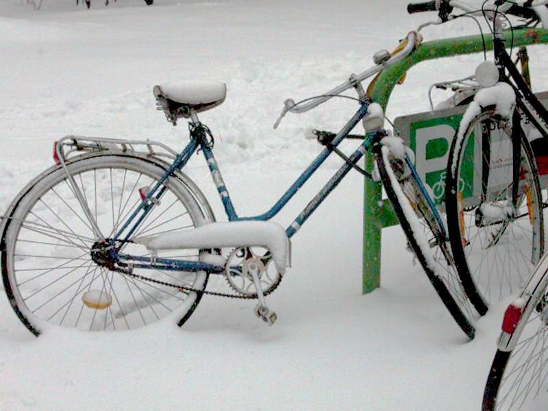 bike in the snow.jpg