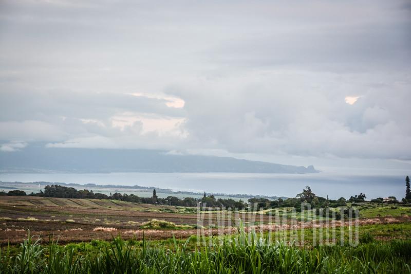 Maui63.jpg