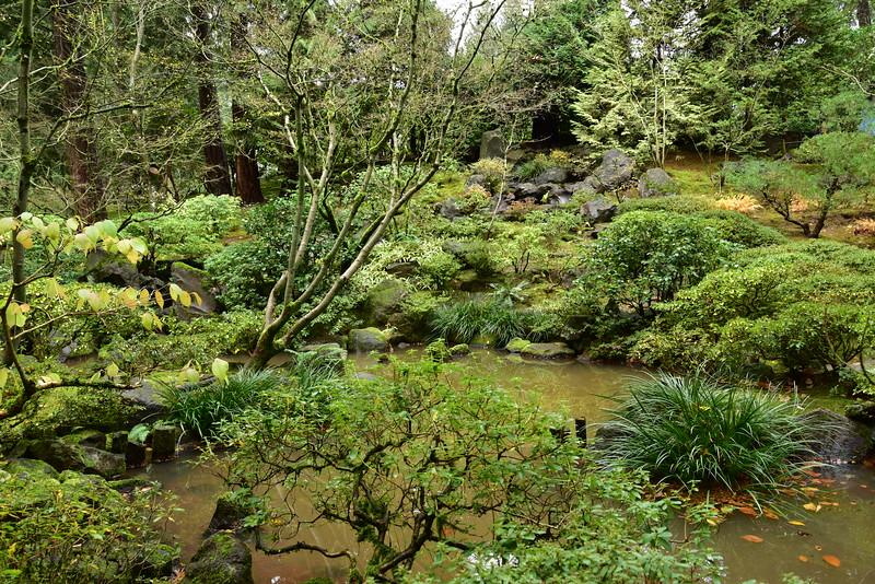 Japanese Pond 2.JPG