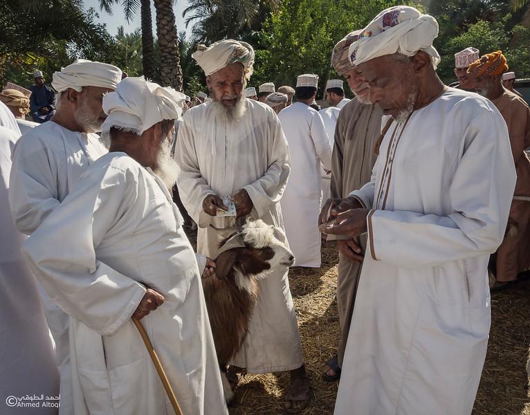 Traditional market (66)- Oman.jpg