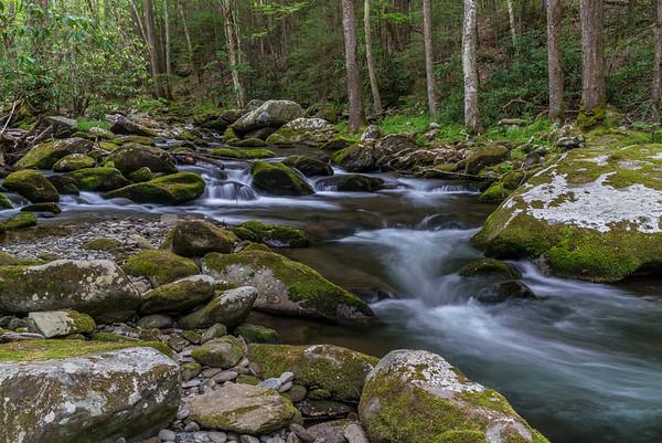 Tennessee ~ Smokey Mountains