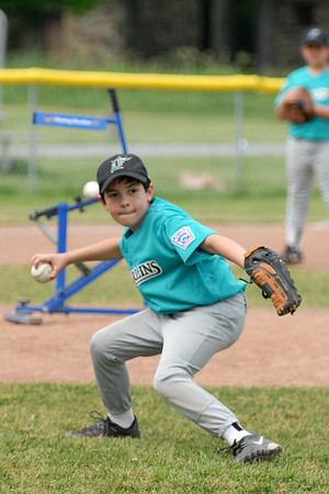East Utica Little League and Minor League