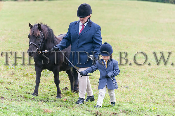 RRC Summer Show Lawmarnock 3 August 2014