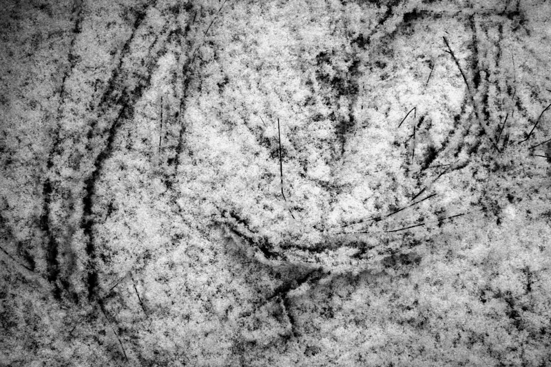 080128-020BW (Abstract; Branches, Snow).jpg