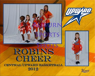 Robins - Cheer