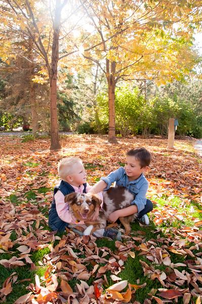 DogDays_Dogs_Gardens_2015_PIC_5864.jpg