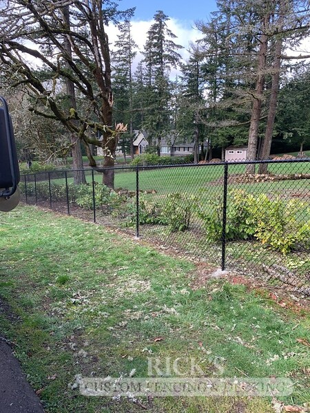 4148 - Black Chain Link Fencing
