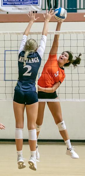 Volleyball (14).jpg