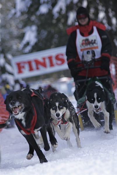 Conconully Dogsled Race Jan 2008 Card 1 206.jpg