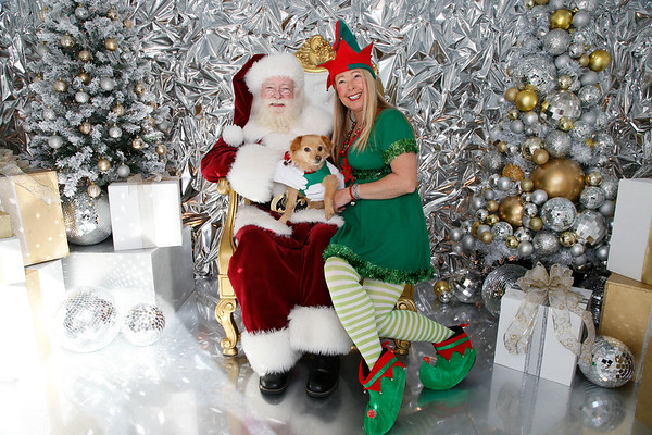 The District at Tustin Legacy - Santa Pet Photos - Dec. 1, 2018