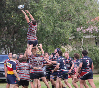 2019 Southern Districts Rugby