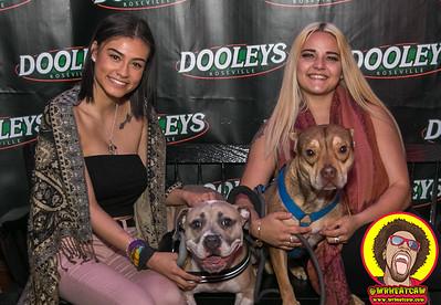 Dooley's 05-08-2019