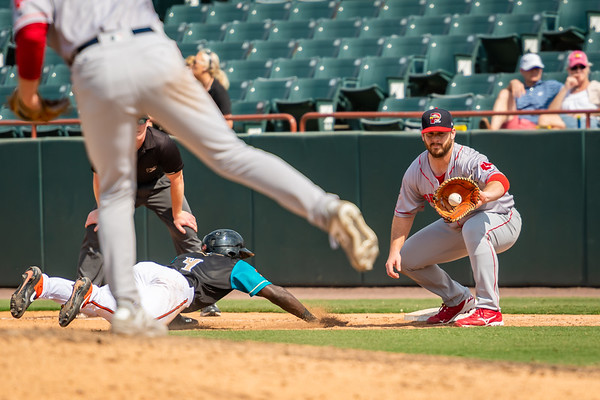 2019 Minor League Baseball