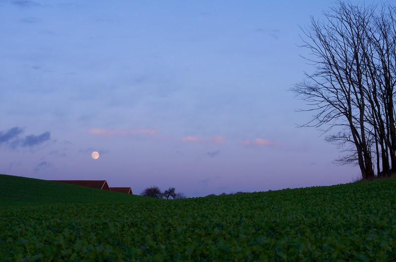 Moon Over Crops