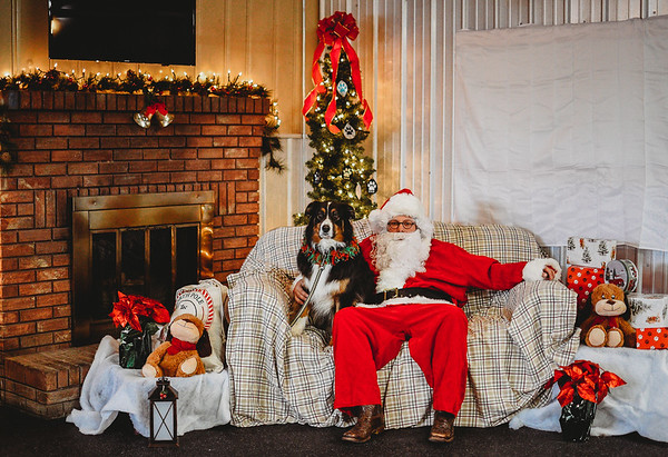 All Pro Dogs K9 Corral Photos with Santa