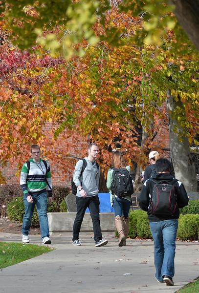 campus3165.jpg