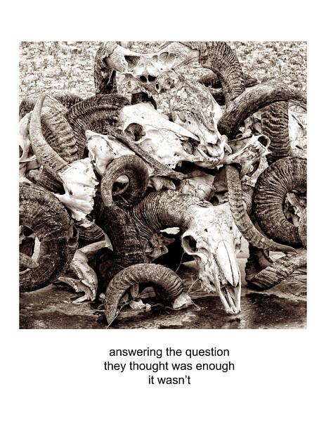 2009-11-28 Ozona Skulls house black and white  with poem 0907.jpg