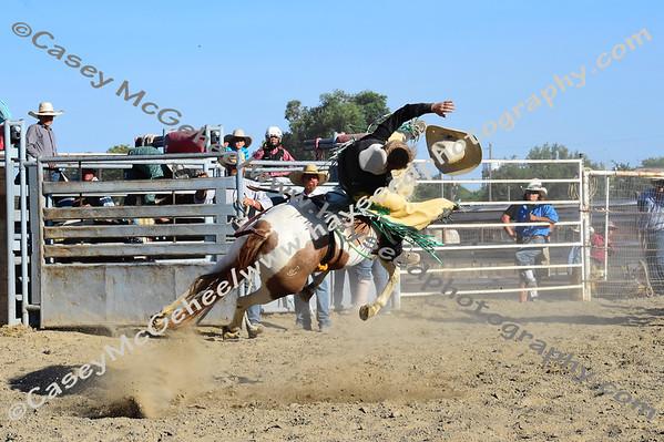 Wildl Eclipse Rodeo  8/19