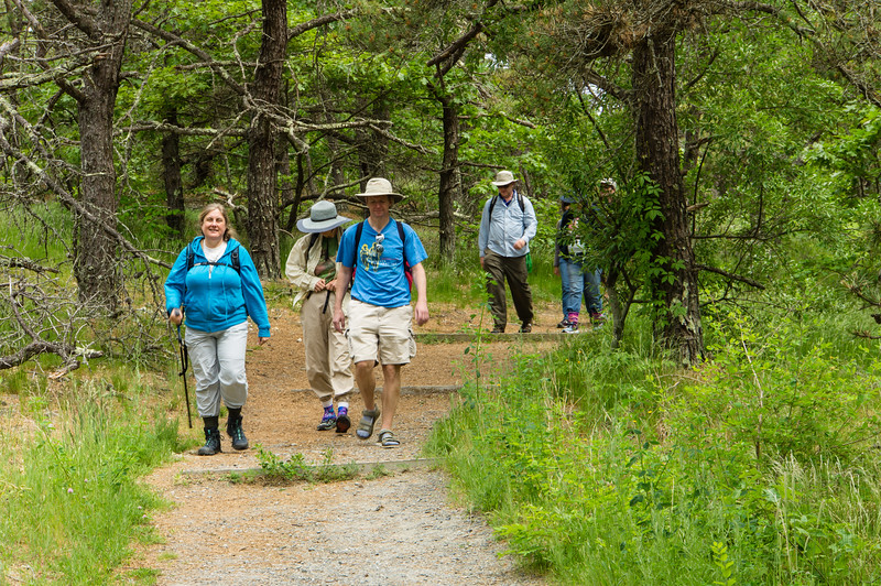 Group on Great Island Trail