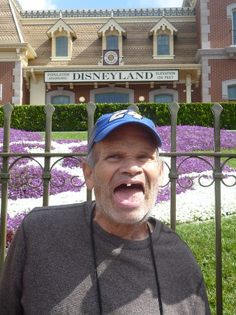 Disneyland #1723 (May 15 - 18)