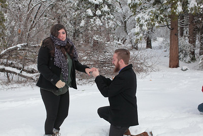Christmas Proposal Surprise!