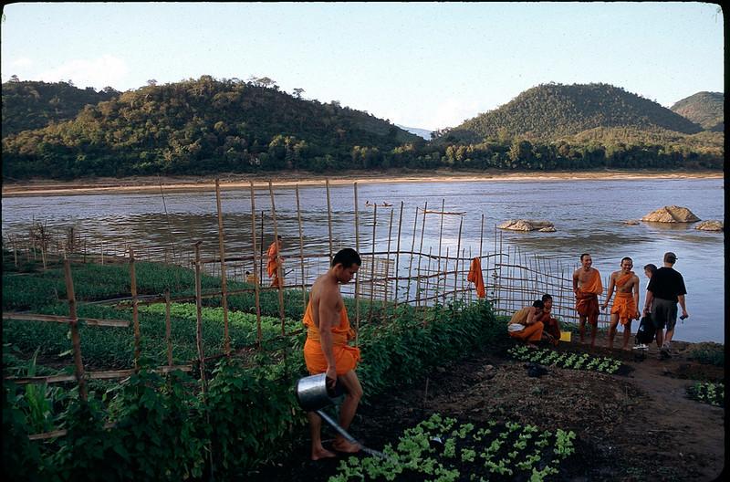 Laos1_116.jpg