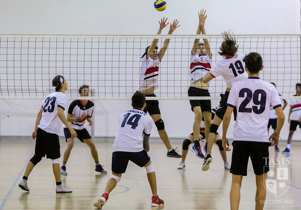 TASIS Hosts Varsity Boys ISSL Volleyball Tournament